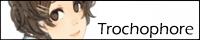 trochophore | SAI講座・メイキング